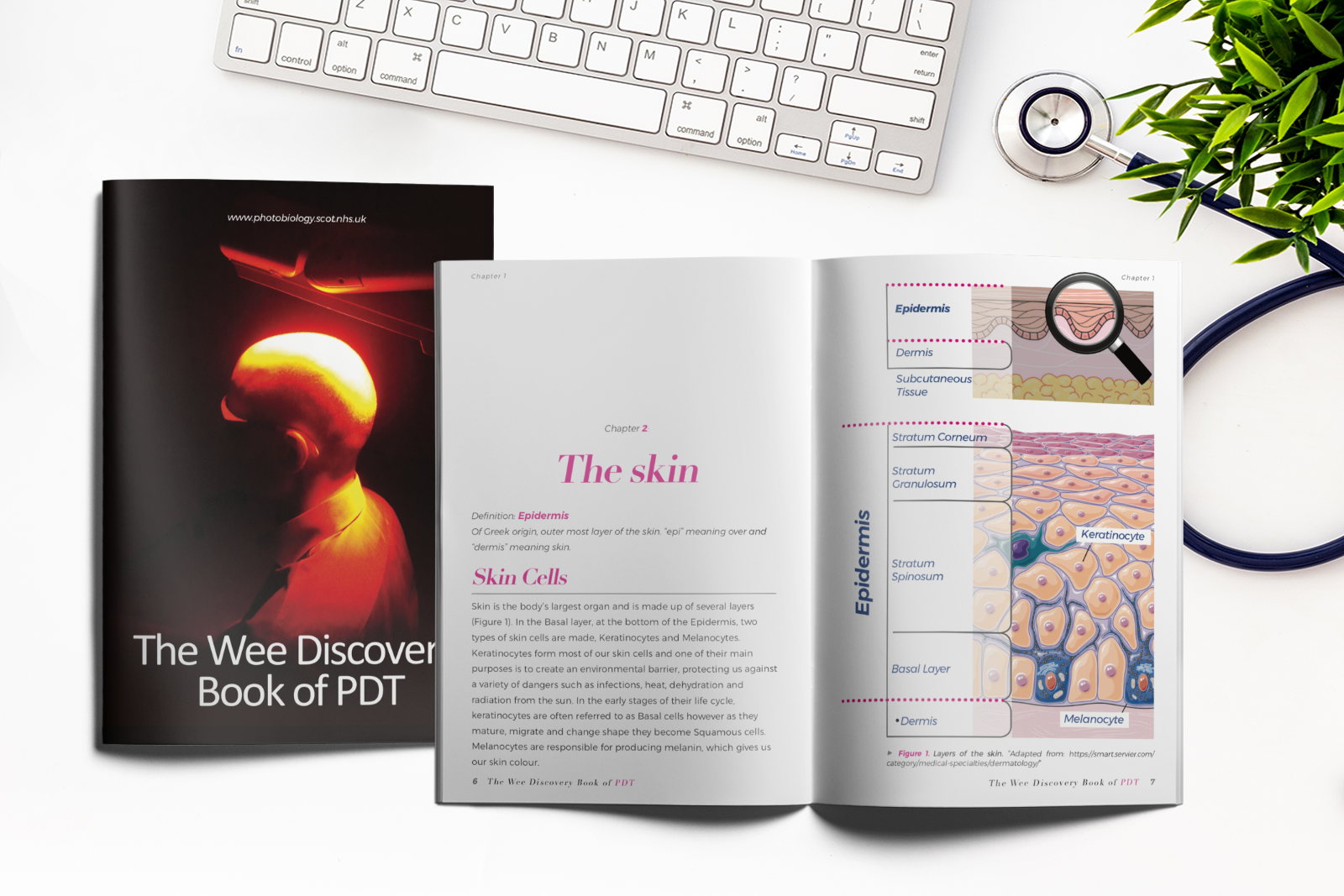 The-wee-discovery-book-of-PDT-blog